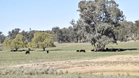 Rural / Farming commercial property for sale at ADELARGO ROAD Grenfell NSW 2810