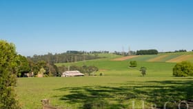 Rural / Farming commercial property for sale at 98 Baldwins Road Shady Creek VIC 3821