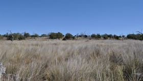 Rural / Farming commercial property sold at 0 Kowitz Road Oakey QLD 4401