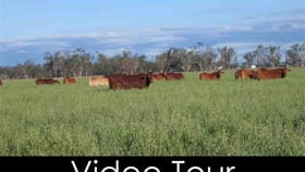 Rural / Farming commercial property sold at Oakey QLD 4401