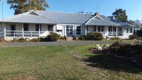 Rural / Farming commercial property sold at UAH 1041 Bareenong Forbes NSW 2871