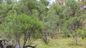 Rural / Farming commercial property sold at . Greens Paddock, Bourke Bourke NSW 2840