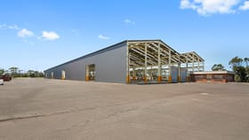 Factory, Warehouse & Industrial commercial property for lease at 1 Darcy Road Port Kembla NSW 2505