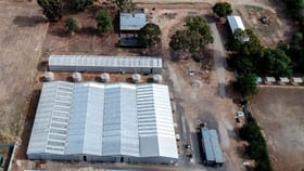 Factory, Warehouse & Industrial commercial property for sale at 51 Morrissey Street Merrigum VIC 3618