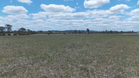Rural / Farming commercial property for sale at 931-983 Rosewood Warrill View Rd Lower Mount Walker QLD 4340
