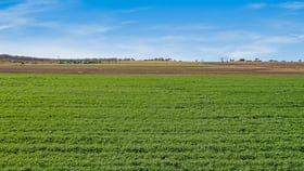 Rural / Farming commercial property for sale at 15690 New England Highway Clifton QLD 4361