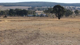 Rural / Farming commercial property for sale at 6838 Henry Parkes Way Parkes NSW 2870