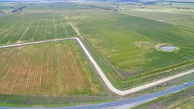 Rural / Farming commercial property for sale at 8499 Murray Valley Highway Kerang East VIC 3579
