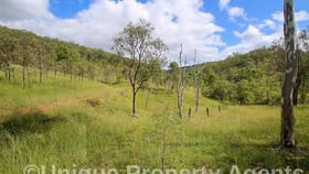 Rural / Farming commercial property for sale at 246 Hays Road Bancroft QLD 4630