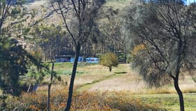 Rural / Farming commercial property sold at 100 Snowy Mountains Highway Adelong NSW 2729