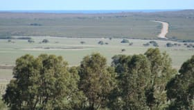 Rural / Farming commercial property for sale at Cervantes WA 6511