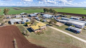 Rural / Farming commercial property for sale at 209 Dungannon Road Clifton QLD 4361