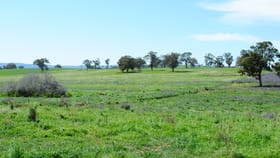 Rural / Farming commercial property for sale at 7034 Burrendong Way Wellington NSW 2820