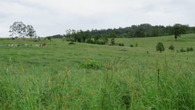 Rural / Farming commercial property for sale at 31-35 Dyraaba Street Bonalbo NSW 2469