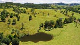 Rural / Farming commercial property for sale at 298 Wallanbah Rd Wallanbah NSW 2422