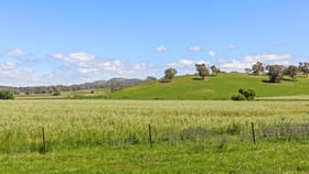 Rural / Farming commercial property for sale at 511 Cooksvale Road Crookwell NSW 2583