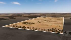 Rural / Farming commercial property for sale at Section 308 Burzacott Road Mulgundawa SA 5255
