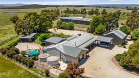 Rural / Farming commercial property for sale at 1200 Kilmore-Lancefield Road Springfield VIC 3434