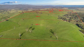 Rural / Farming commercial property for sale at Lot 3 Licola Road Glenmaggie VIC 3858