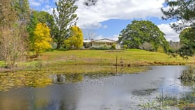 Rural / Farming commercial property for sale at 180 Stage Coach Road Batar Creek NSW 2439