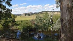 Rural / Farming commercial property for sale at 160 Birradilli Lane Murrumbateman NSW 2582