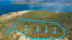 Rural / Farming commercial property for sale at 97 Mount Louis Road Tinderbox TAS 7054