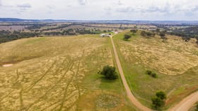 Rural / Farming commercial property for sale at 1581 Geegullalong Road Murringo NSW 2586