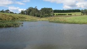 Rural / Farming commercial property for sale at 50 Lenna Road East Ridgley TAS 7321