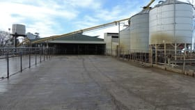 Rural / Farming commercial property for sale at 1433 Leitchville-Kerang Road Mcmillans VIC 3568
