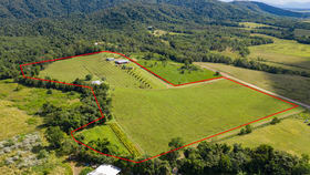 Rural / Farming commercial property for sale at Moresby QLD 4871