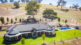 Rural / Farming commercial property for sale at 492 Stony Park Road Burrumbuttock NSW 2642