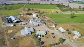 Rural / Farming commercial property for sale at 9023 Mt Lindesay Highway Tamrookum QLD 4285