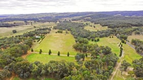 Rural / Farming commercial property for sale at 831 Taylors Flat Road Boorowa NSW 2586