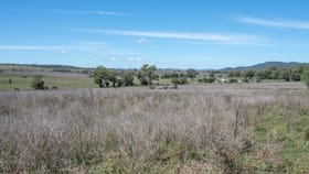 Rural / Farming commercial property for sale at Phillipsons Lane Maryvale NSW 2820