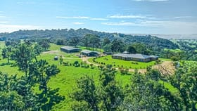 Rural / Farming commercial property for sale at 568 Coopers Guly Road Coopers Gully NSW 2550