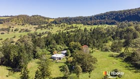 Rural / Farming commercial property for sale at 99 Dugan Road Theresa Creek NSW 2469