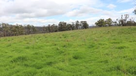 Rural / Farming commercial property for sale at Square Range Road Mount Mitchell NSW 2365