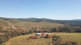 Rural / Farming commercial property sold at 629 Taradale Road Tumbarumba NSW 2653