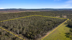 Rural / Farming commercial property for sale at Lot 1 Harrigan Road Sandy Camp QLD 4361