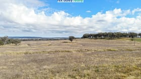 Rural / Farming commercial property for sale at Lot 1/214 Leviathan Road Inverell NSW 2360