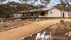 Rural / Farming commercial property for sale at 386 Codrington Road Mannum SA 5238