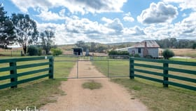 Rural / Farming commercial property for sale at 92 Mills Road Molong NSW 2866