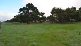 Rural / Farming commercial property for sale at 125 Eastern Road Millicent SA 5280
