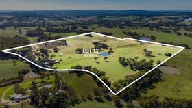 Rural / Farming commercial property for sale at 1669 Strathalbyn Road Flaxley SA 5153