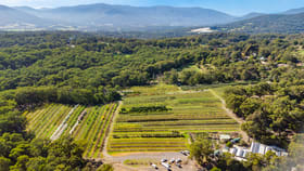 Rural / Farming commercial property for sale at Woori Yallock VIC 3139
