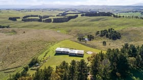 Rural / Farming commercial property for sale at 125 Wyndham Lane Toothdale NSW 2550