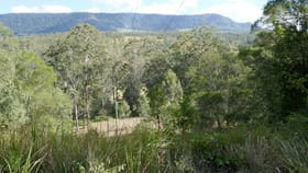 Rural / Farming commercial property for sale at 690 Yabbra Road Old Bonalbo NSW 2469