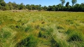 Rural / Farming commercial property for sale at 1/104 Warrubullen Road Silkwood QLD 4856