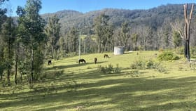 Rural / Farming commercial property for sale at 81 Brittens Road Tantawangalo NSW 2550