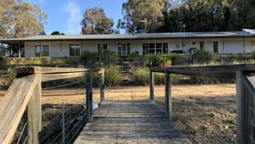 Rural / Farming commercial property for sale at 159 Marsden Road Rylstone NSW 2849